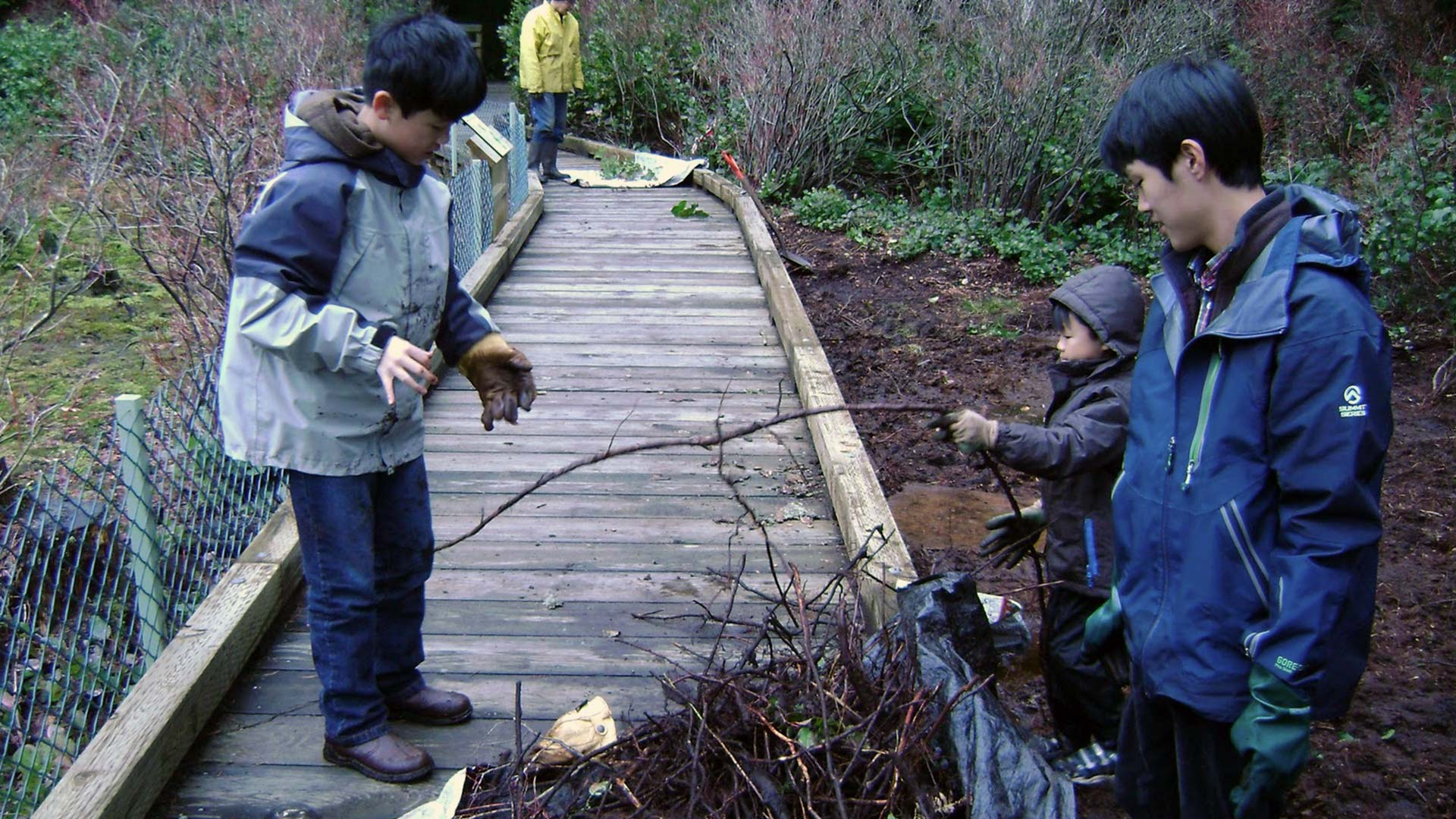 Pacific Parklands Foundation Project Unwelcome Visitors Combating Invasive Species